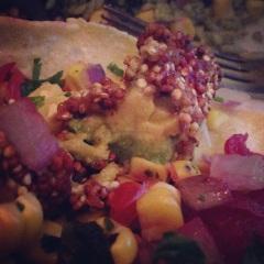 Quinoa encrusted avocados